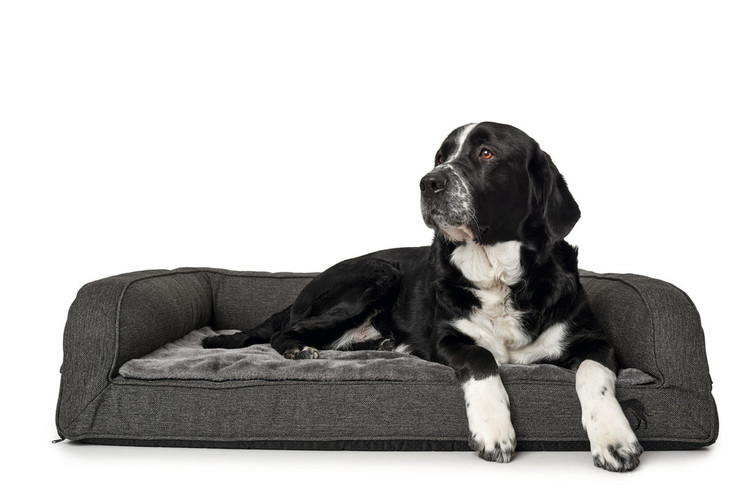 HUNTER Livingston Ortopedisk Hundbädd Grå