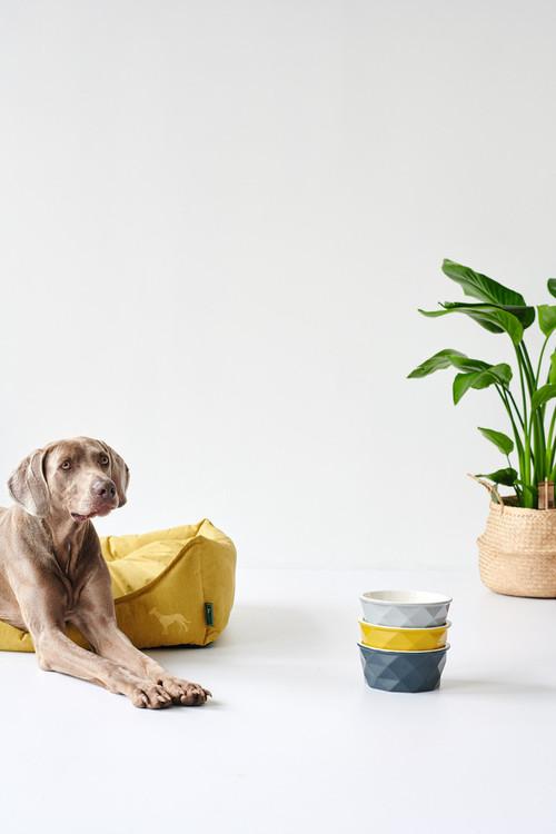 HUNTER Eiby Hundbädd Gul