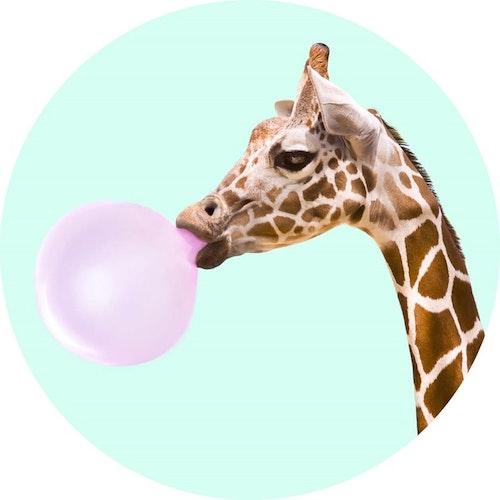 POPSOCKETS Bubble Gum Giraffe