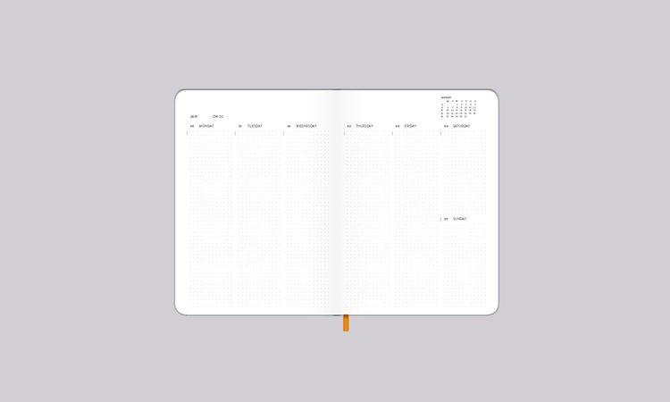 Weekly Diary S 2020 Shiny Silver