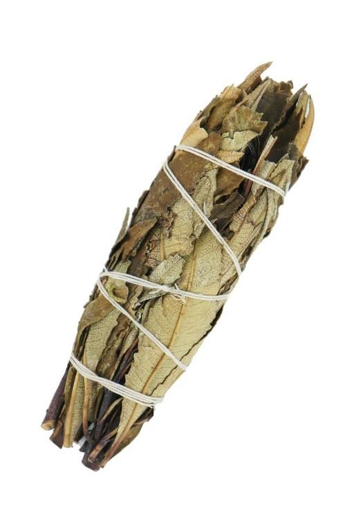 Yerba Santa Sage 10 cm, Smudge