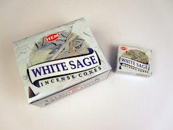 White Sage, Salvia rökelsekoner, HEM