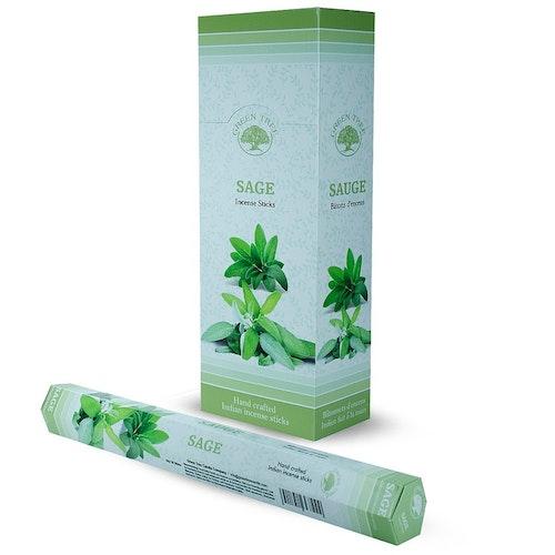 Sage, Salvia rökelse, Green Tree