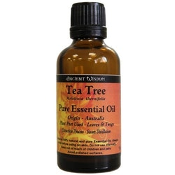 Tea Tree Eterisk Olja, Ancient Wisdom, 50ml