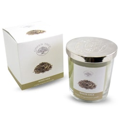 White Sage 200g Doftljus, Green Tree