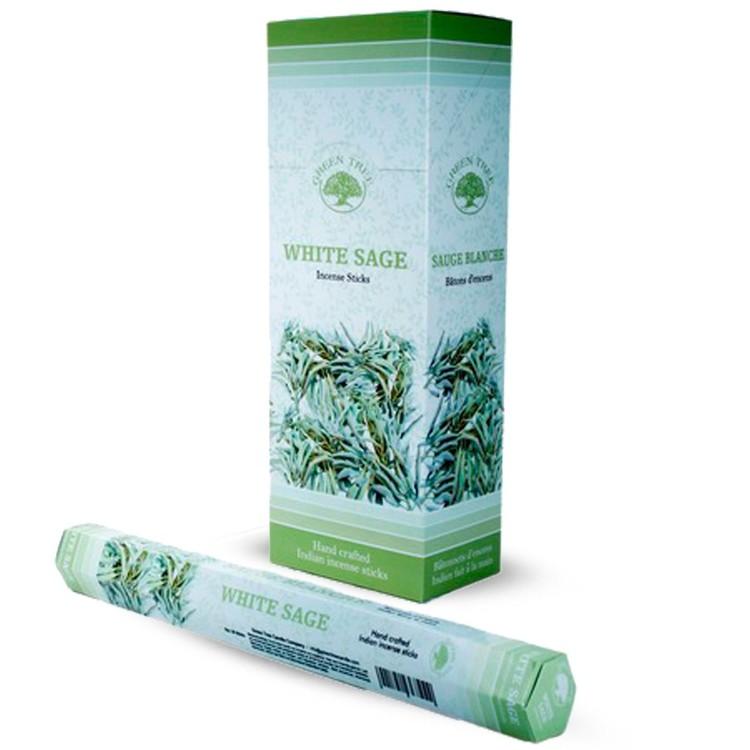 White Sage, Salvia rökelse, Green Tree
