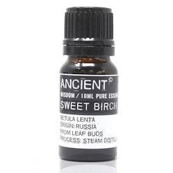 Björk (Sweet Birch) Eterisk Olja, Ancient Wisdom, 10ml