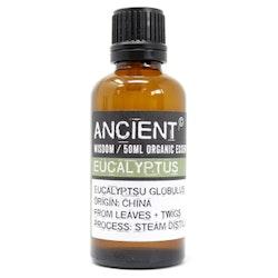 Eukalyptus Organic Eterisk Olja, Ancient Wisdom, 50ml