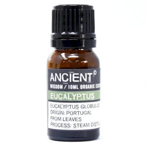 Eukalyptus Organic Eterisk Olja, Ancient Wisdom, 10ml