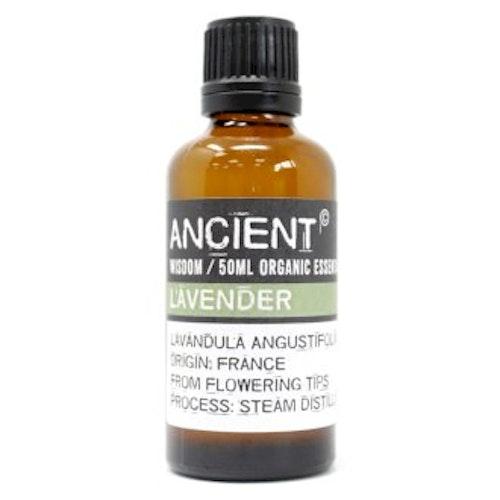 Lavendel, Lavender, Organic Eterisk Olja, Ancient Wisdom, 50ml