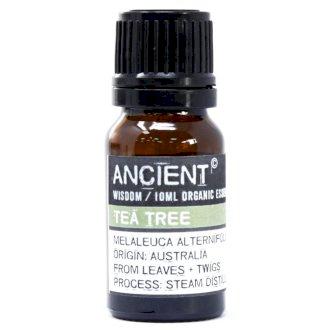 Tea Tree Organic Eterisk Olja, Ancient Wisdom, 10ml