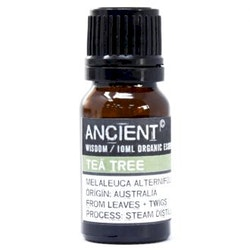 Tea Tree Organic Eterisk Olja, Ancient Wisdom, 10ml