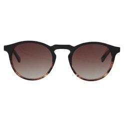 Sunglasses, SoHo, Hazel