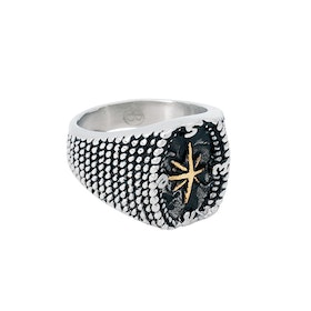 Ring, gold star, steel / silver