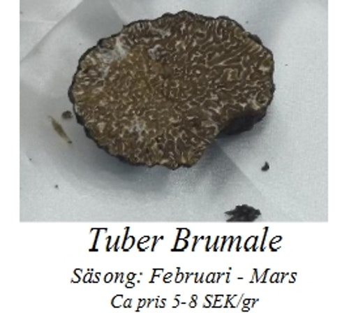 Tuber Brumale