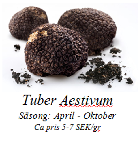 Tuber Aestivum