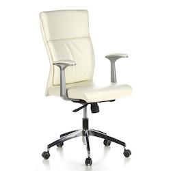 Skrivbordsstol, Atenia - Flera färger
