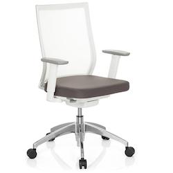 Ergonomisk skrivbordsstol, Aspen - Vit med nätrygg
