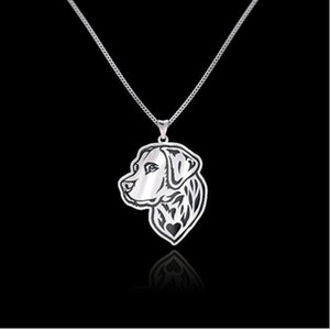 Golden Retriever halsband 925 silver