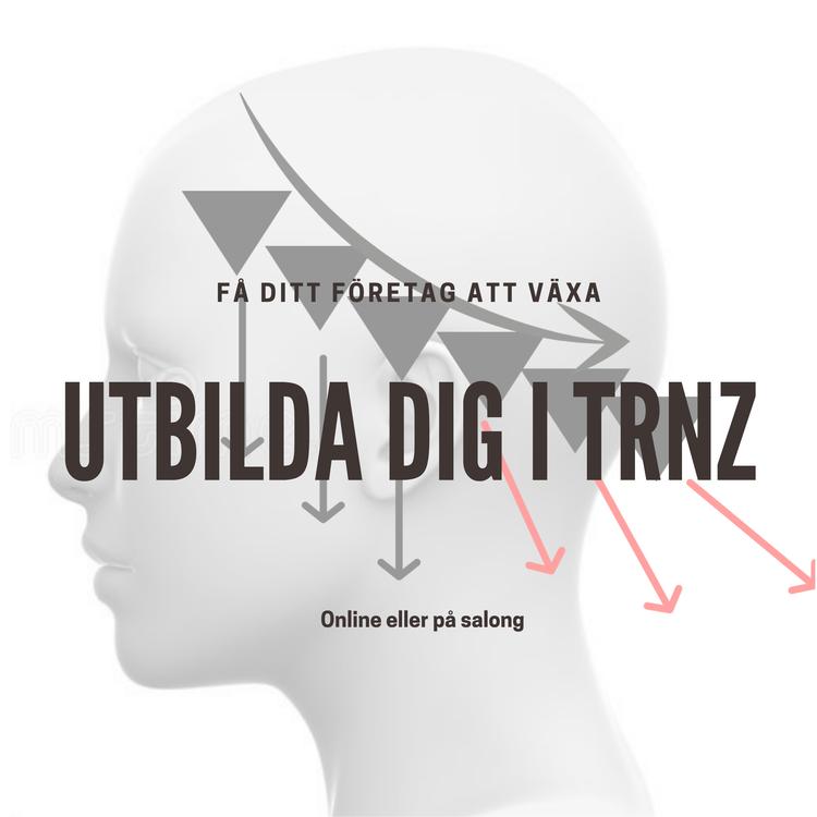 TRNZ - Video kurs