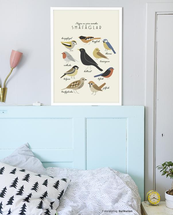 Småfåglar