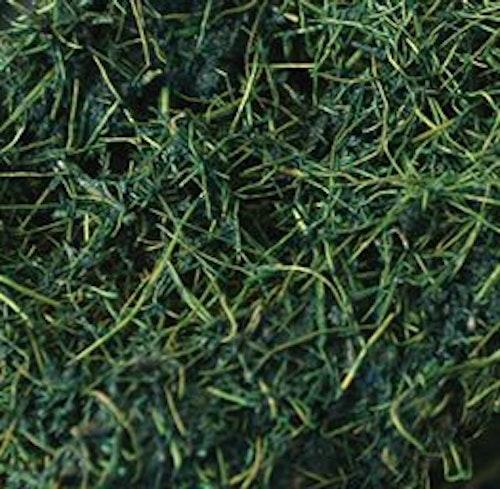 Natural lian large