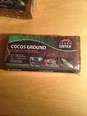 Cocus ground