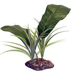 Evergreen canopy