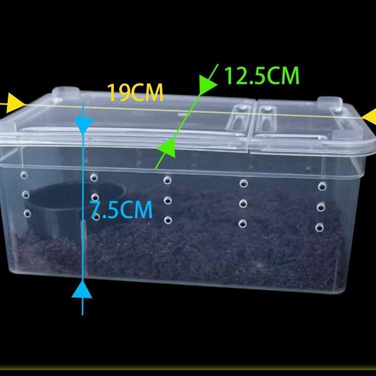 Nordic Brederbox small 19 x 12,5 x 7,5cm transperant
