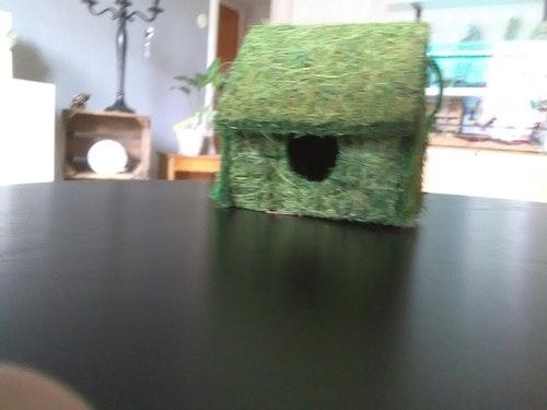 Grönt gnagarhus