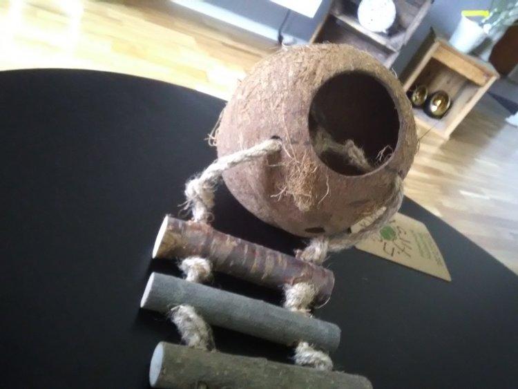 Kokosnöt med repstege