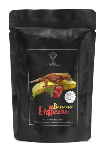 Gecko nutrition banan / jordgubb 100 h