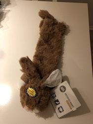 roadkill rabbit