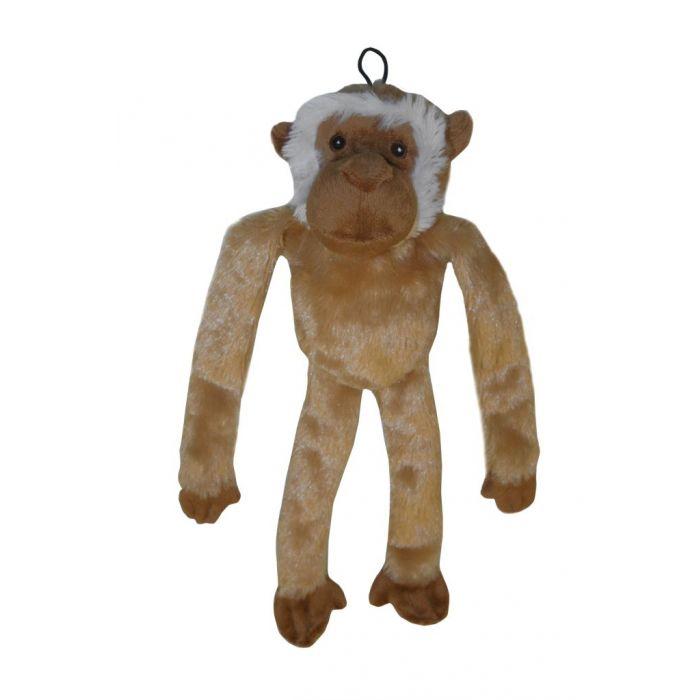 Swinger Baboon