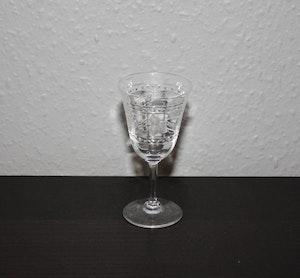 Slipat snapsglas