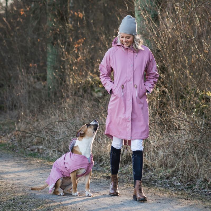 Erbjudande på Daisy regnkläder till hund & matte