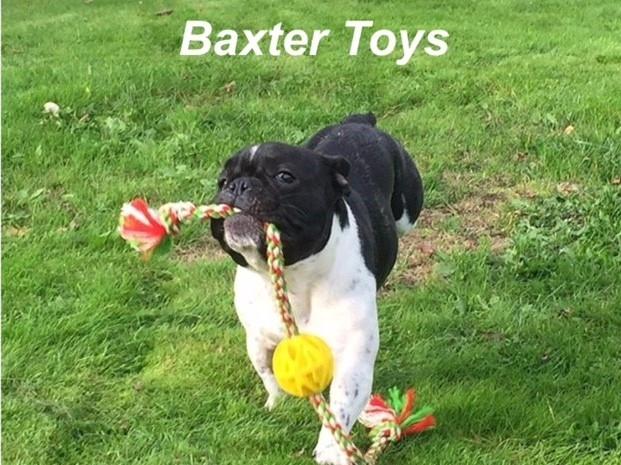 Baxter Toys