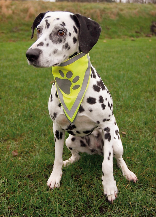 Trixie säkerhetsscarf med reflex