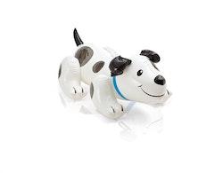 Puppy ride on