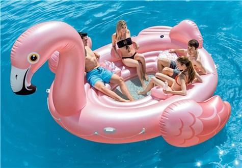Flamingo party island