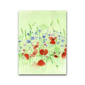 Nobhilldesigners litet kort Blomsteräng