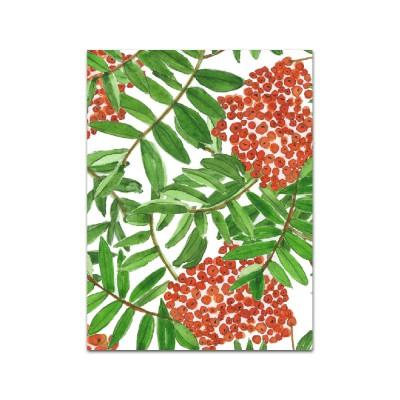 Nobhilldesigners litet kort Rönnbär