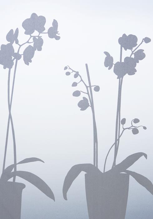 Siluett Frost fönsterfilm Orkidé