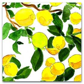 Nobhilldesigners kort med kuvert Citroner