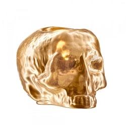 Kosta Boda Still Life Skull ljuslykta guld