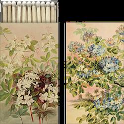 Sköna Ting tändstickor blå blommor
