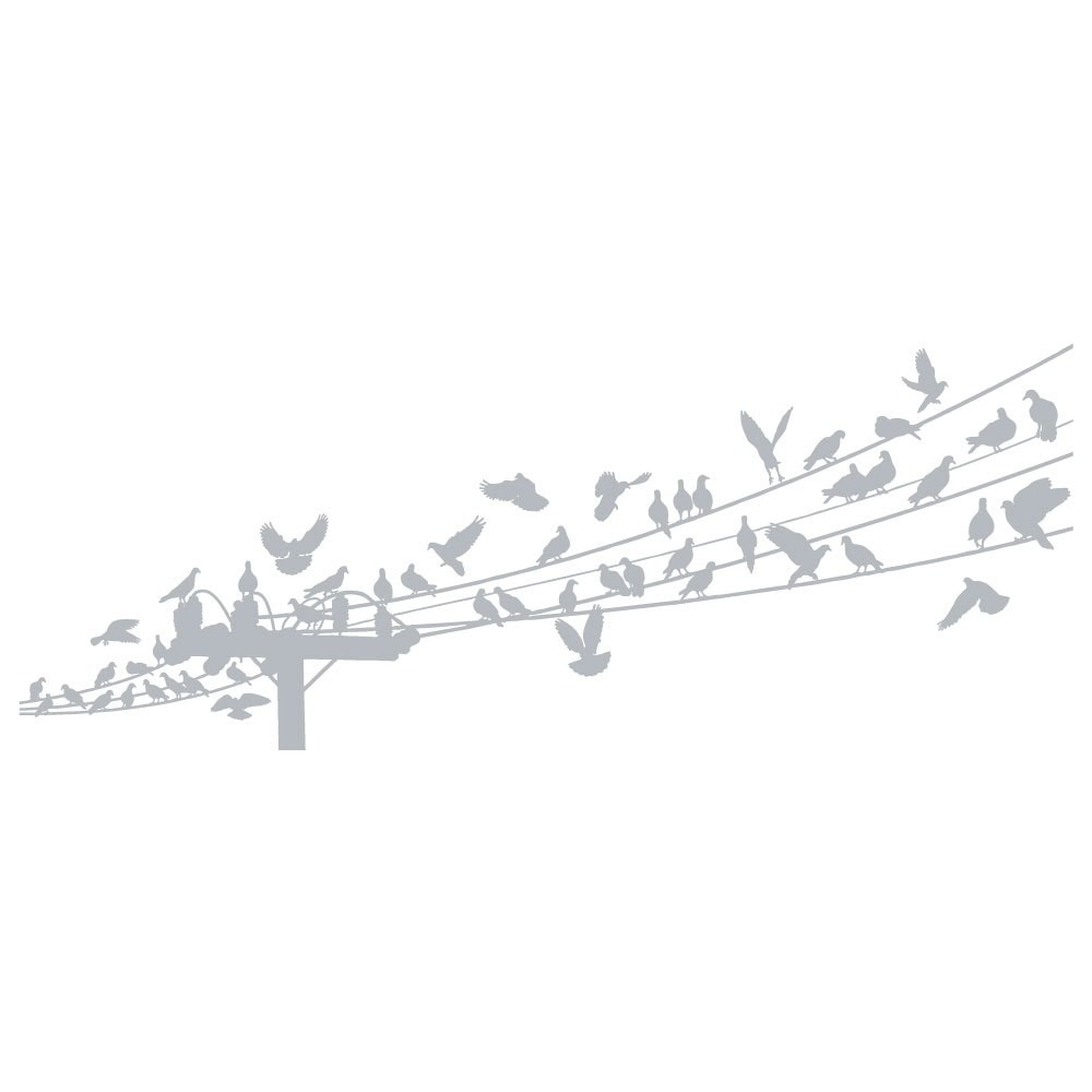 Fönsterfilm - Fåglar