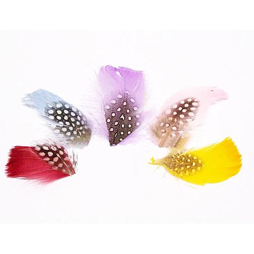 Fjädrar i olika färger
