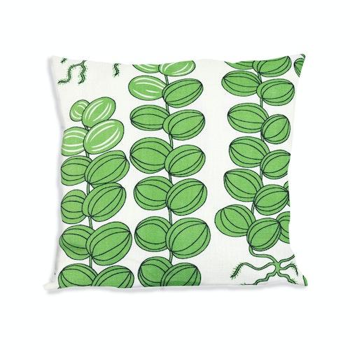 Celotocaulis grön 40x40