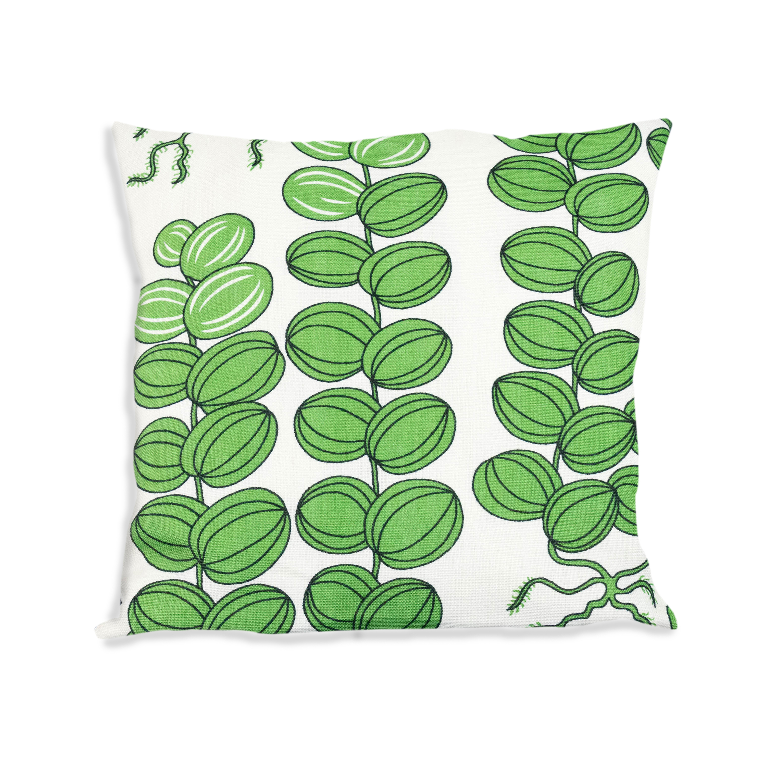 Celotocaulis grön 50x50